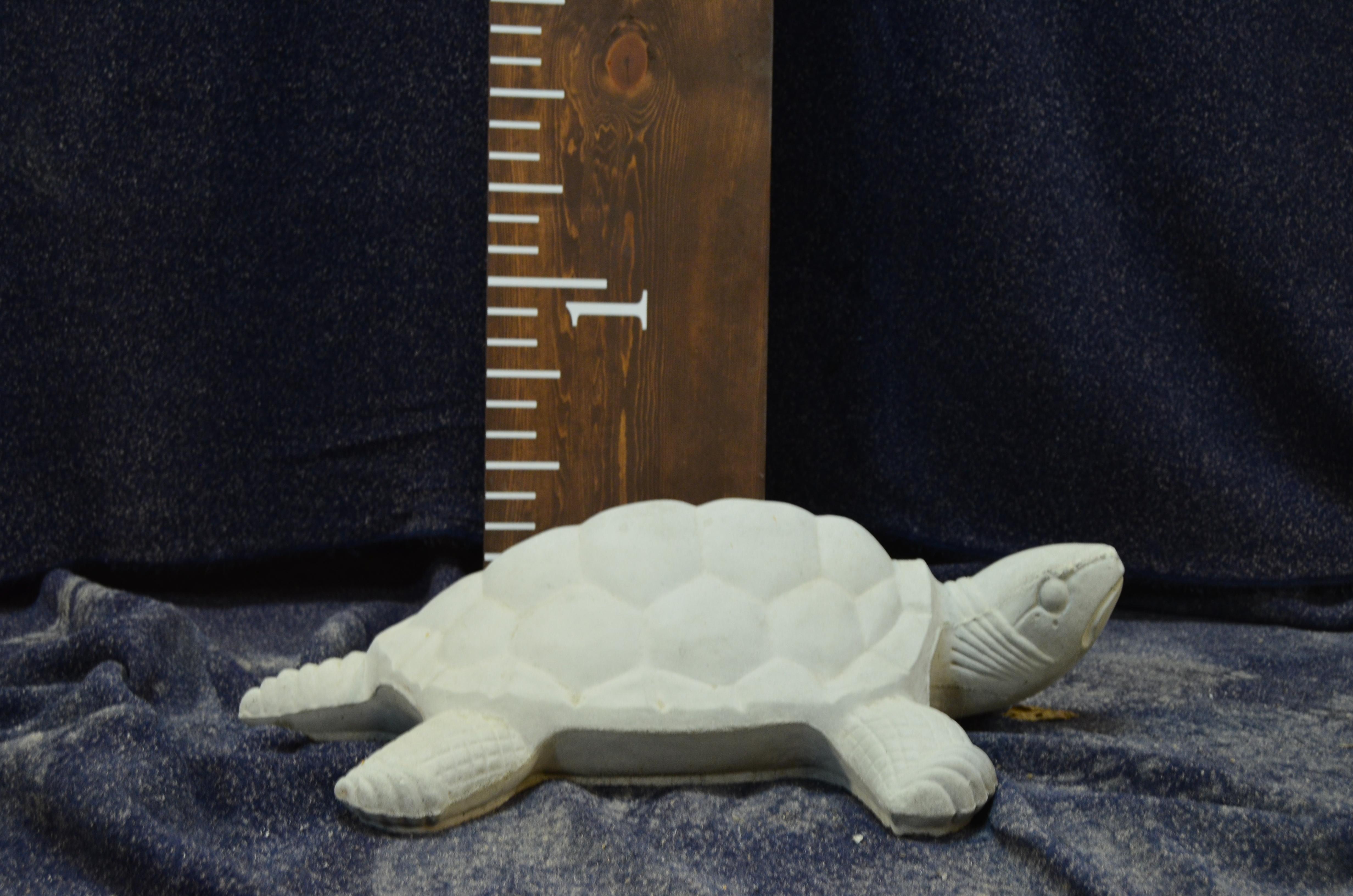 Lg Sea Turtle