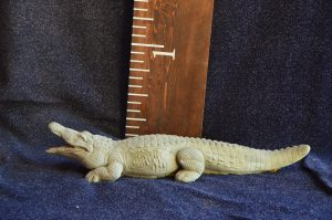 Small Alligator