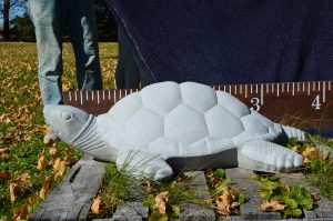 Xlg Sea Turtle